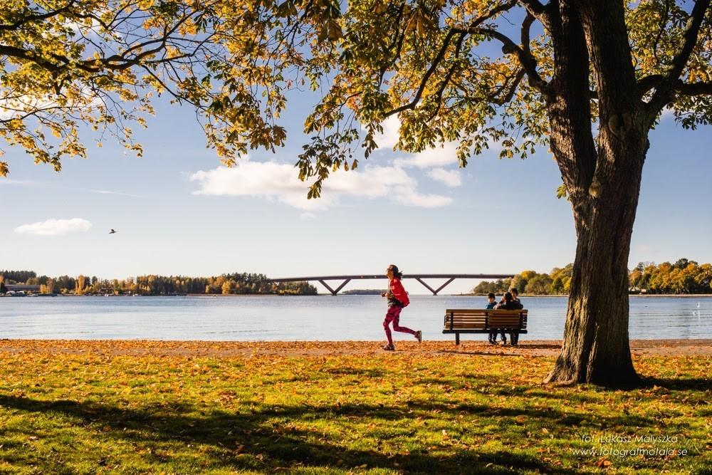 En kvinna joggar längs med kaj. Tröden har höstiga färger och i bakgrunden ser man en stor bo över vattnet.