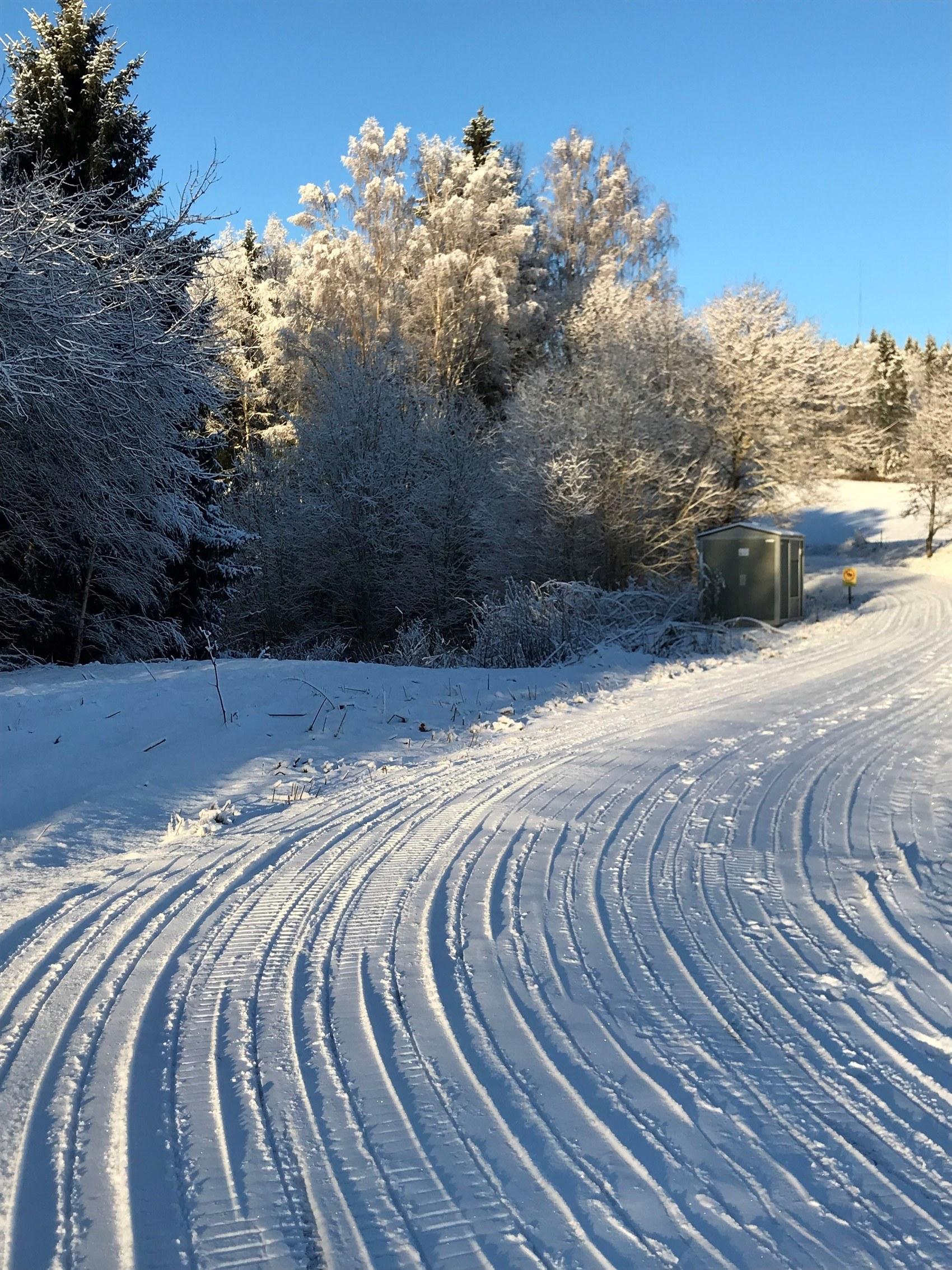 Skidspår i vintrigt landskap en solig dag