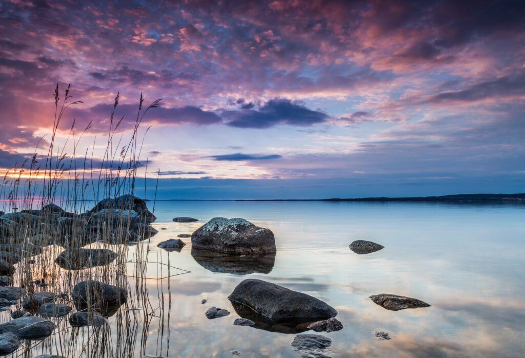 Vattenbryn med vass och stenar. Det är skymning och himlen är rosa och lila.