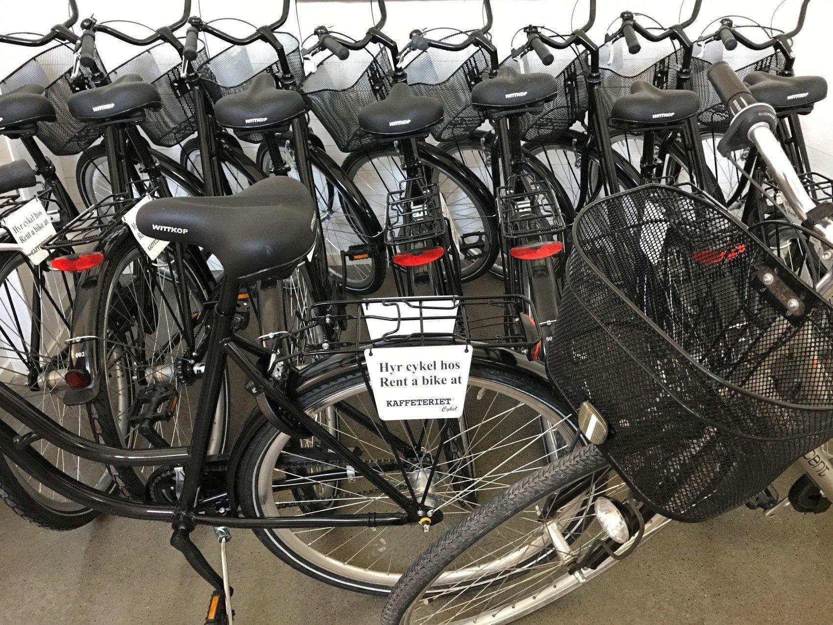 Svarta cyklar står på rad.