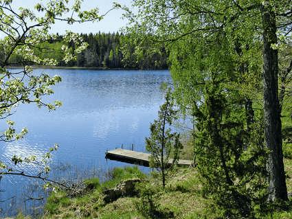 Skogsjö med en liten brygga som går ut i vattnet.