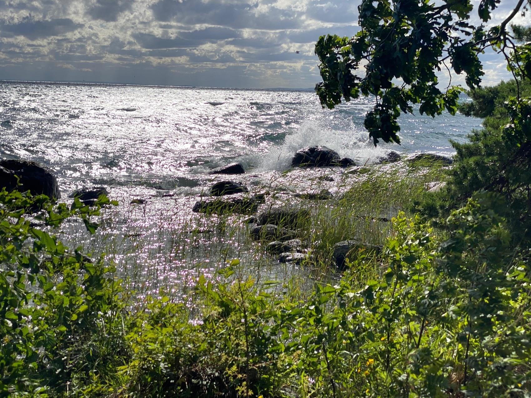 Foto från strandkant. Stora vågor går på vattnet.