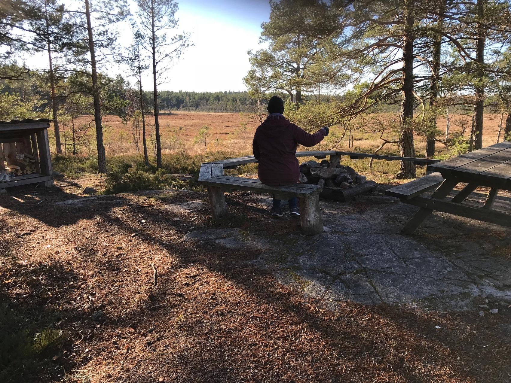 Person sitter på en bänk i en skog.