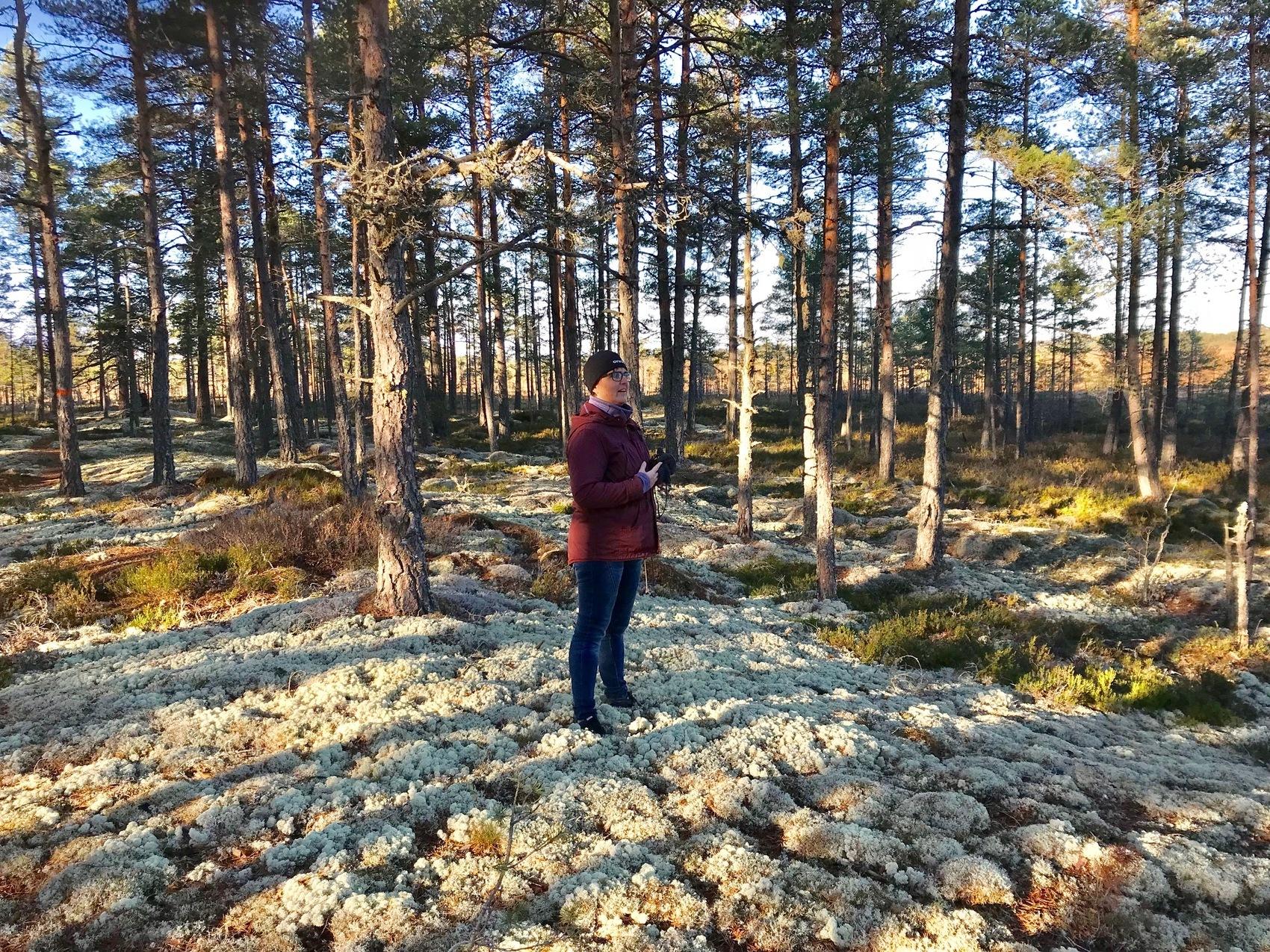 Person står i en skog på vit mossa.
