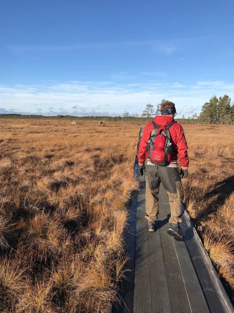 Man i röd jacka går på en spång på ett fält.