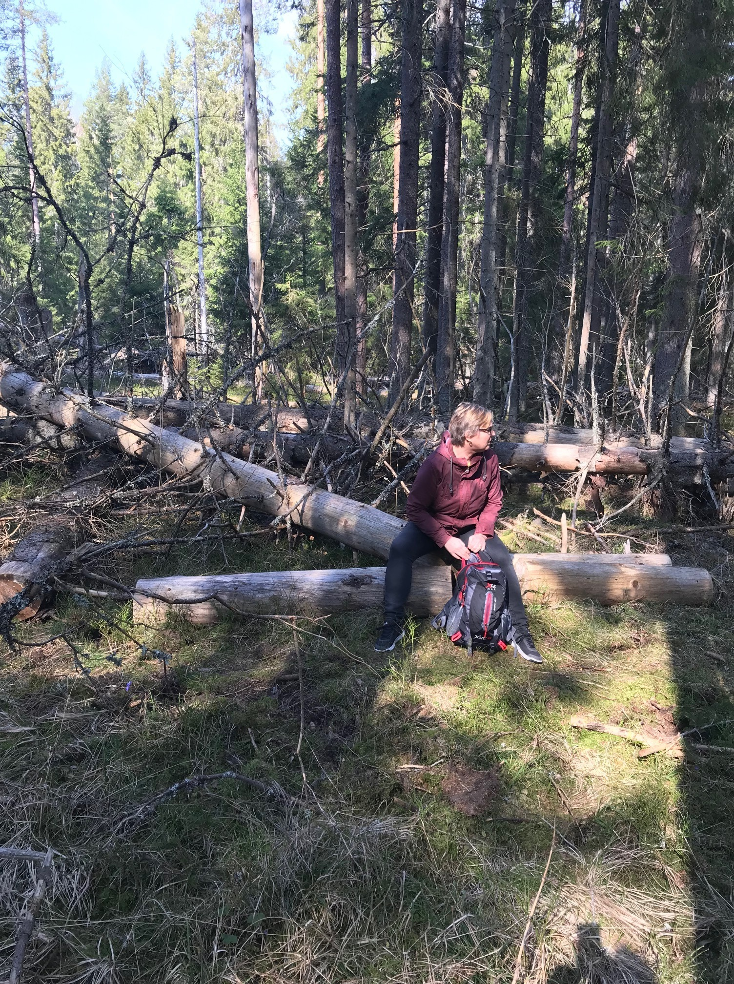 Kvinna tar paus på skogspromenad.