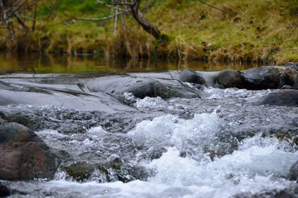 Vatten porlar i en liten fors