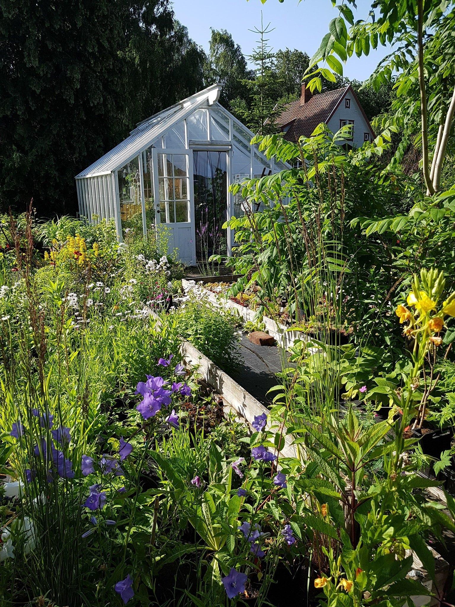ett blomstrande land i bakgrund står ett växthus med dörren öppen