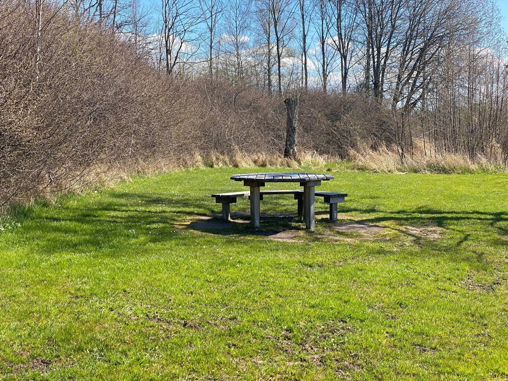 Picknickbord på gräsplan