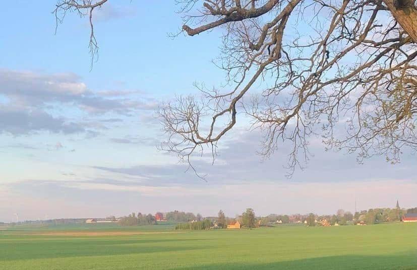 vy över ett slättlandskap i lite disigt väder, pastellfärgad himmel över en avlägsen ort.
