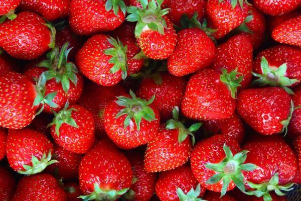 ett foto på massor med knallröda jordgubbar med lite grönt skaft kvar