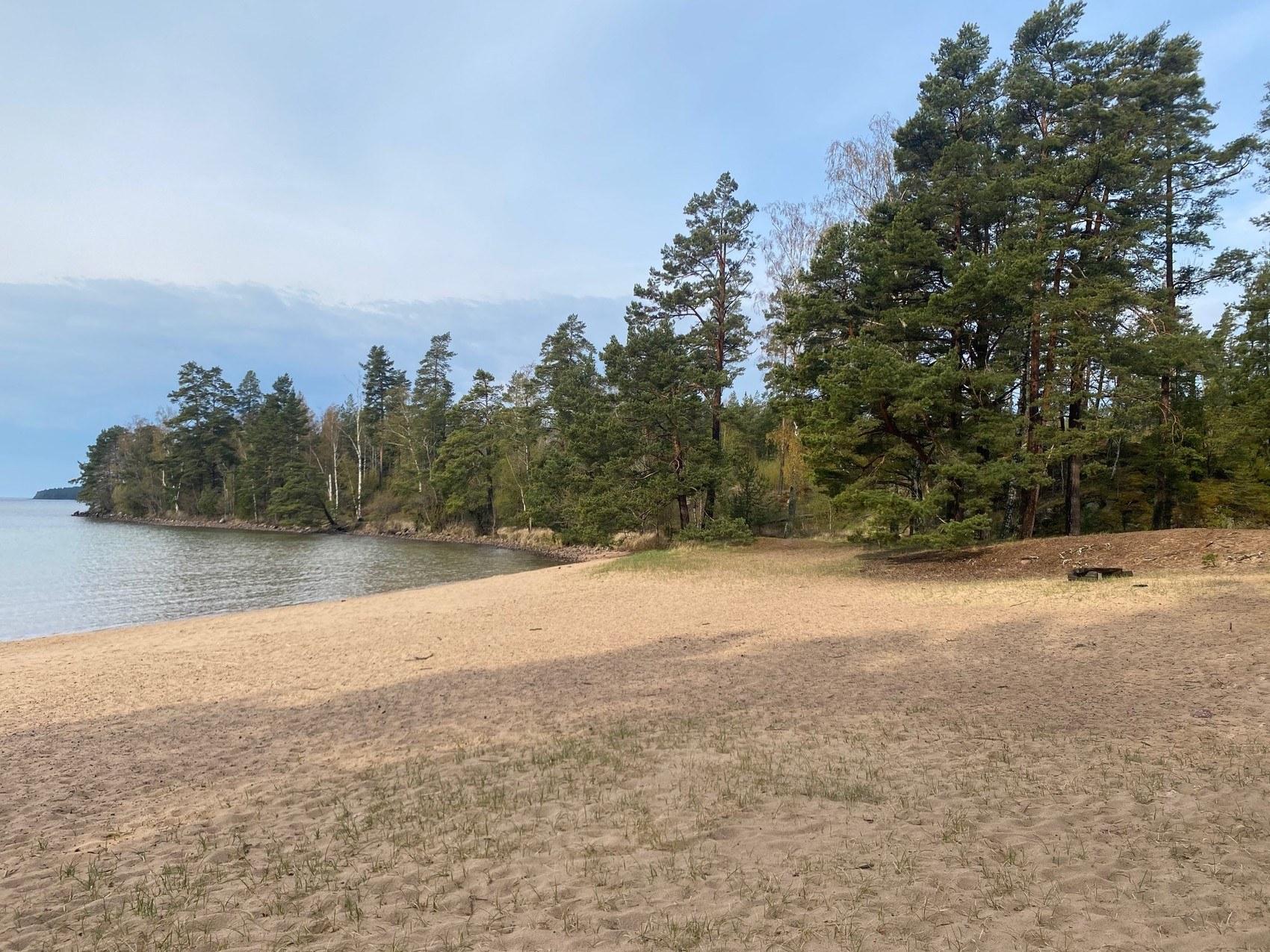 Bred sandstrand. Längre bort breder träd ut sig längs med vattnet.