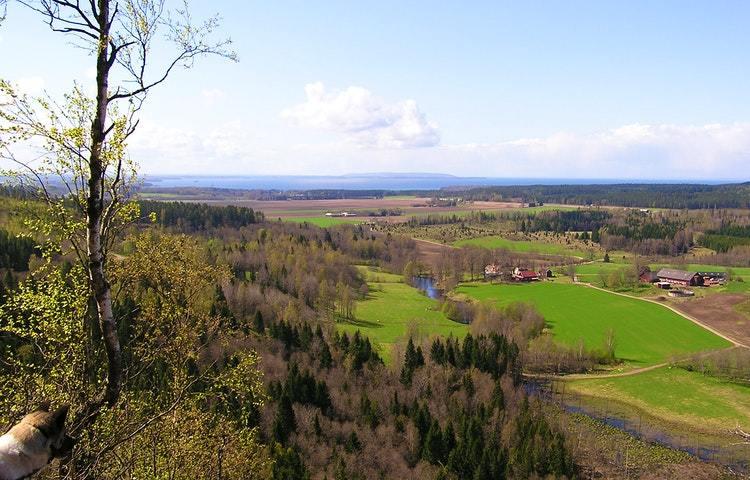 Utsikt över ett vårigt landskap med skog och åkrar