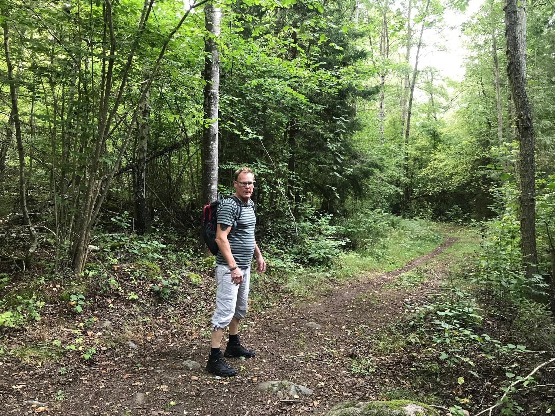 Vandrare i skog
