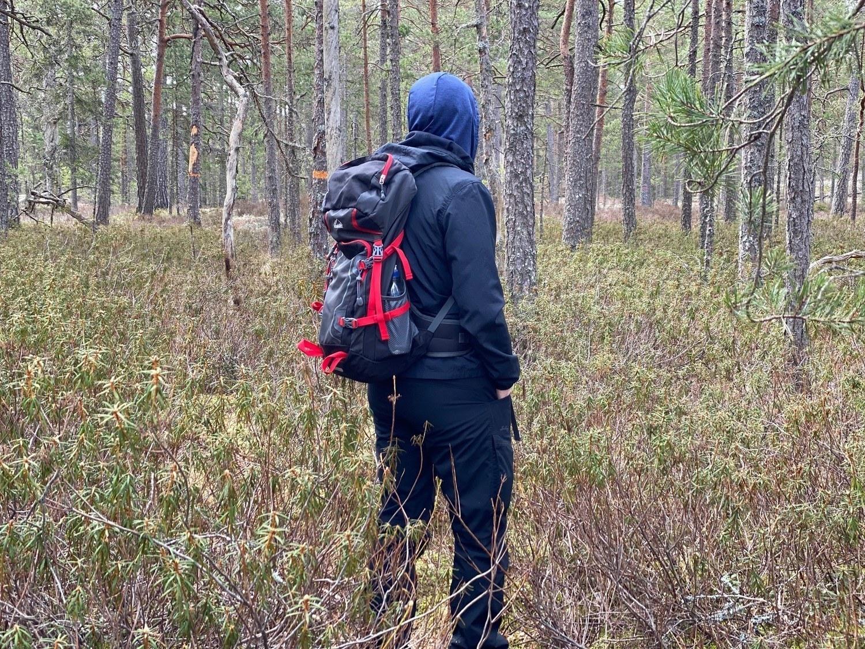 Vandrare i hög vegetation