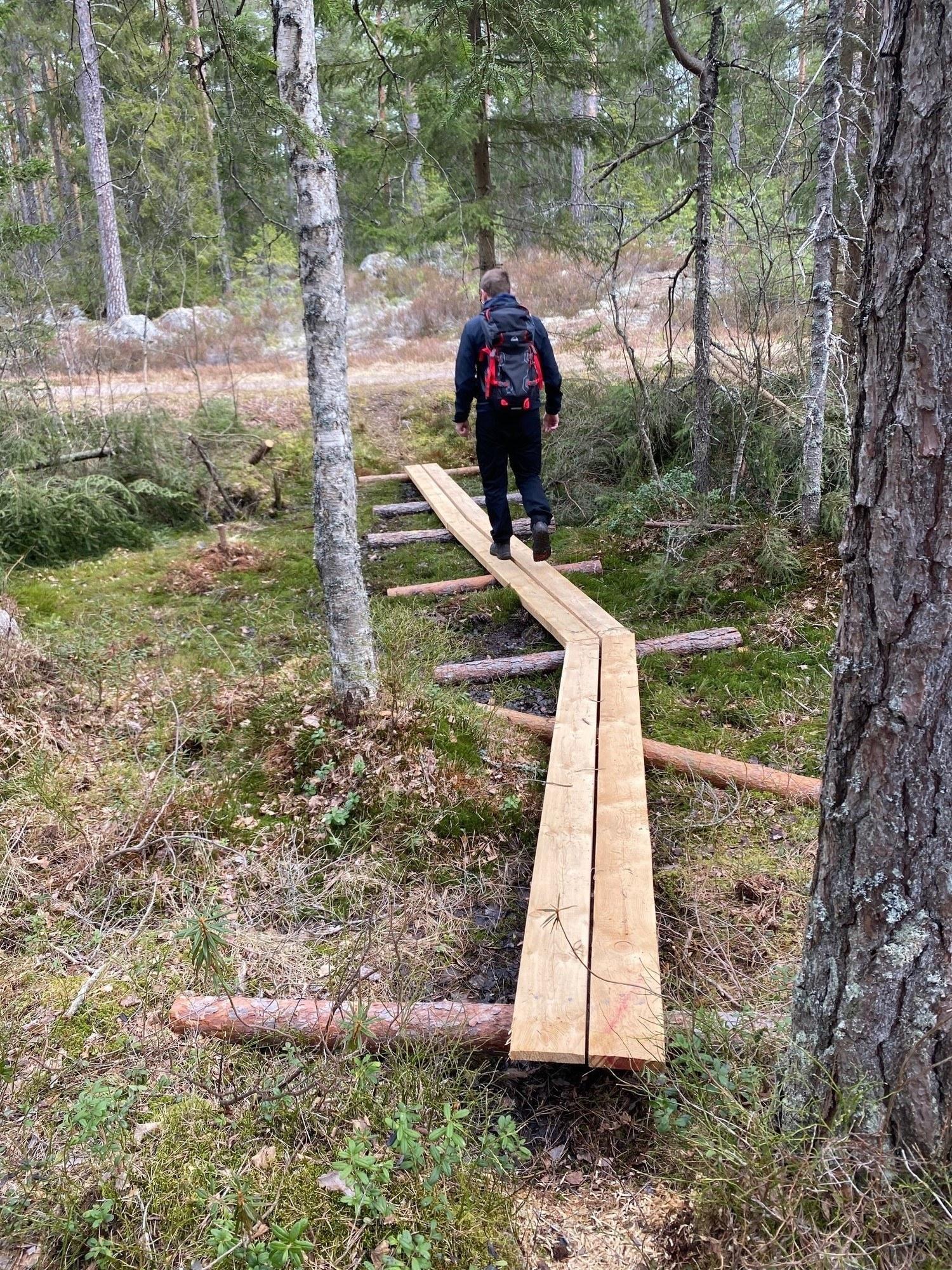 Vandrare går på spång i skogen