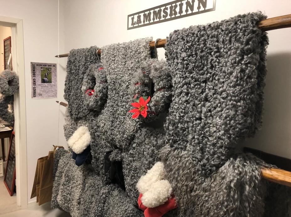 Ett foto på en vit vägg där det hänger ett tiotal lammskinn