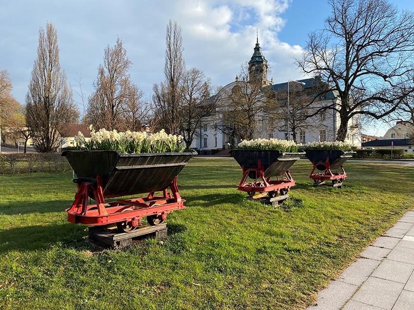 Ett foto på tre svarta tågvagnar som har blommor planterade i sig.